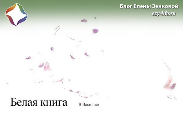 Белая книга - Виктор Васильев